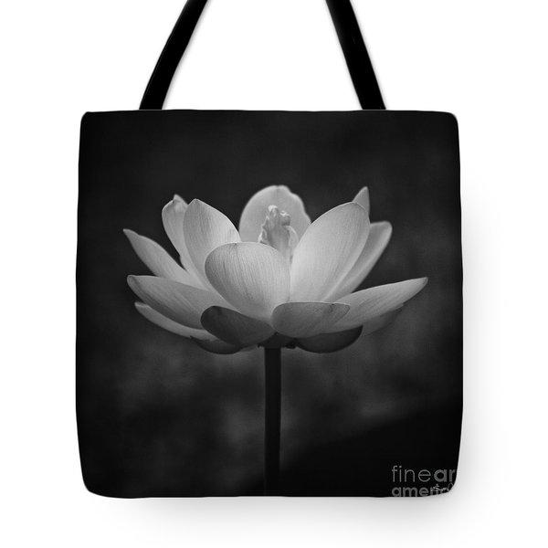Morning Lotus Tote Bag by Scott Pellegrin