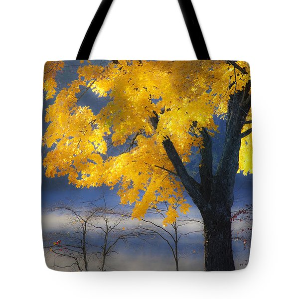 Morning Maple Tote Bag by Rob Travis