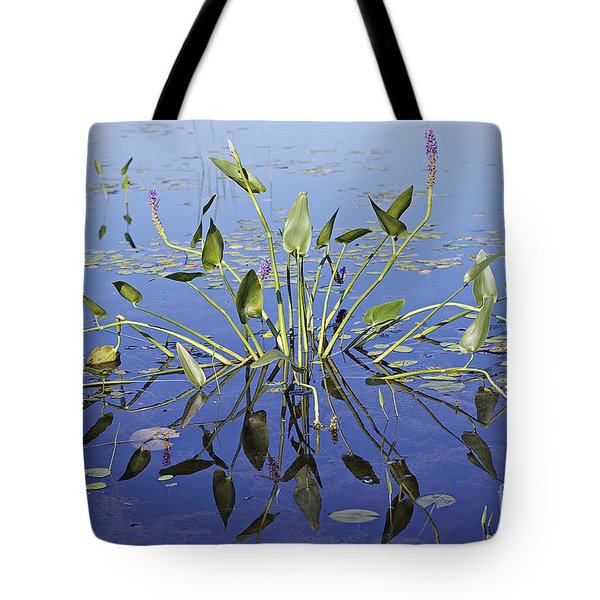 Morning Reflection Tote Bag by Eunice Gibb
