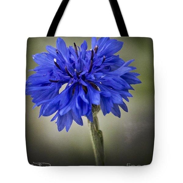Morning Surprise - Artist Cris Hayes Tote Bag