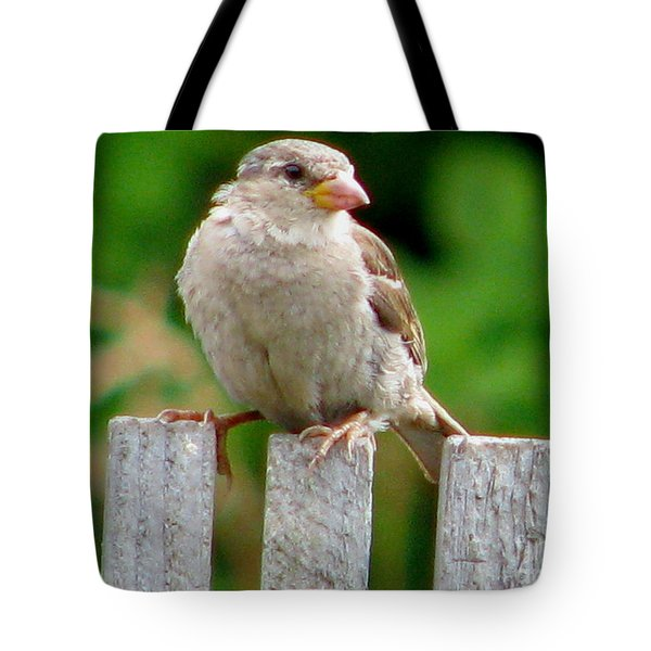 Morning Visitor Tote Bag by Rory Sagner