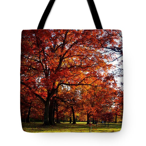 Morton Arboretum In Colorful Fall Tote Bag by Paul Ge