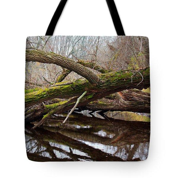 Mossy Tree Tote Bag by Ms Judi