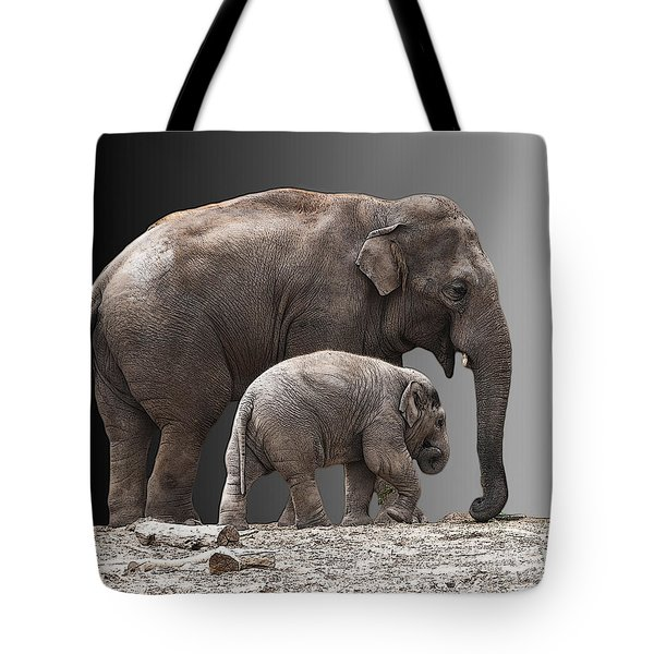 Mother And Baby Tote Bag by Sheila Laurens