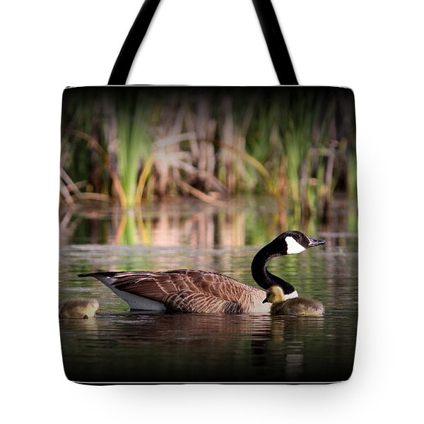 Mother Goose Tote Bag by Travis Truelove