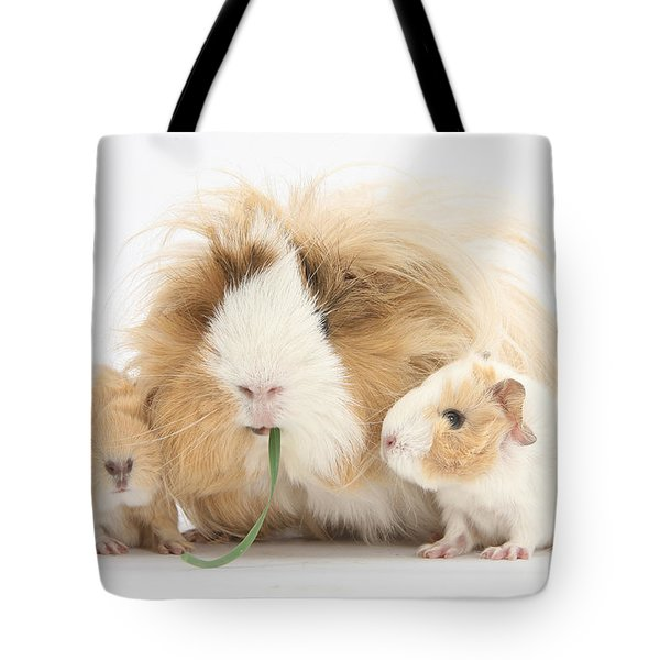 Mother Guinea Pig And Baby Guinea Tote Bag by Mark Taylor