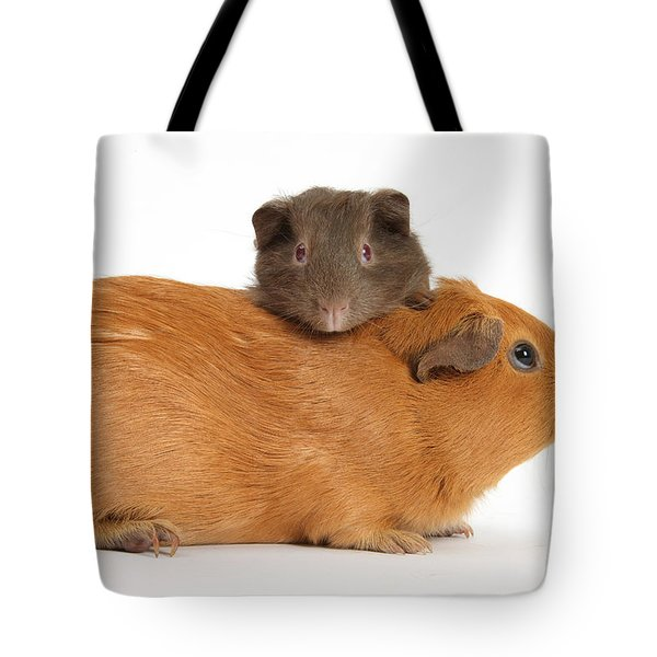 Mother Guinea Pig With Baby Guinea Pig Tote Bag by Mark Taylor