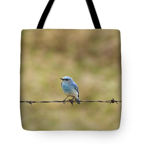 Mountain Bluebird On A Fence Wire Tote Bag by Philippe Widling