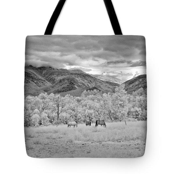 Mountain Grazing Tote Bag by Joann Vitali