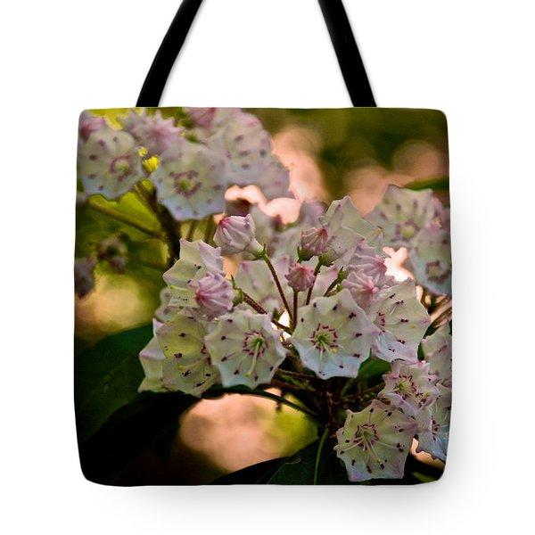 Mountain Laurel Flowers 2 Tote Bag