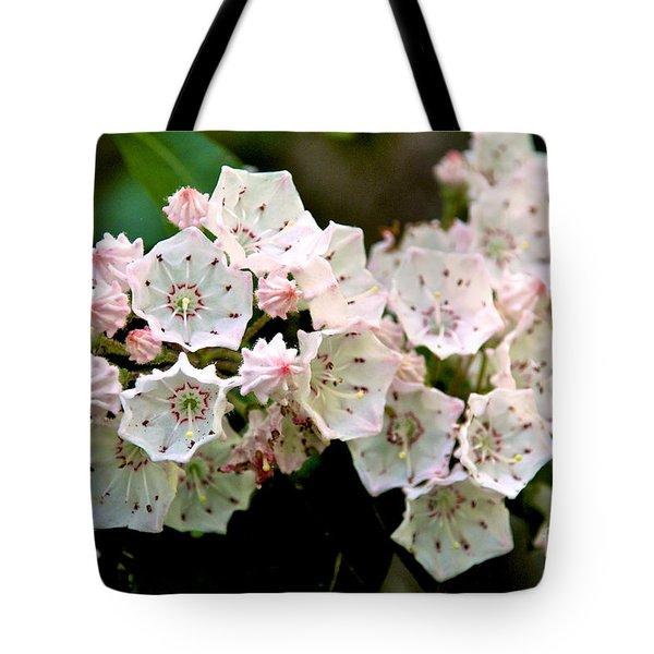 Mountain Laurel Flowers Tote Bag