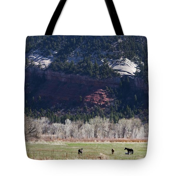 Tote Bag featuring the photograph Mountain Pasture by Lorraine Devon Wilke