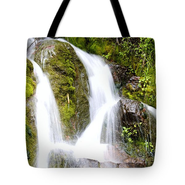Mountain Spring 3 Tote Bag by Janie Johnson