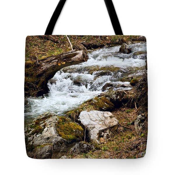 Tote Bag featuring the photograph Mountain Stream by Les Palenik