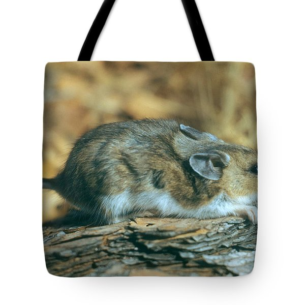 Mouse On A Log Tote Bag by Photo Researchers, Inc.