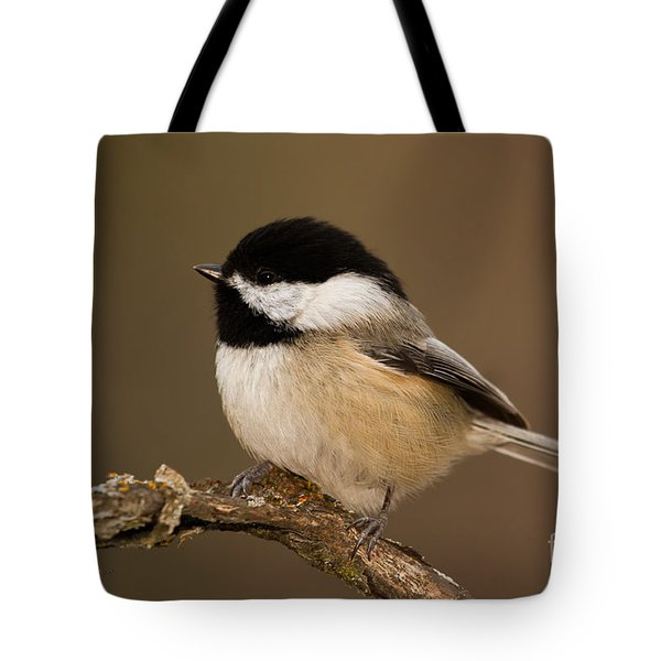 Mr Adorable Tote Bag