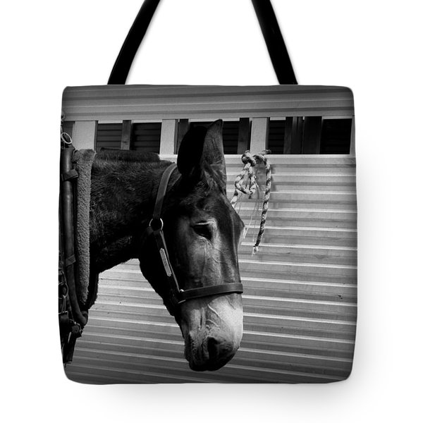 Mule - Tied Up For A While Tote Bag by Travis Truelove