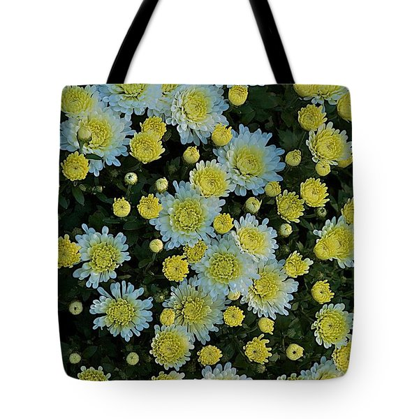 Tote Bag featuring the photograph Mums by Joseph Yarbrough