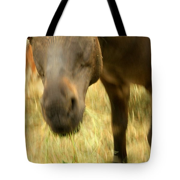 Munching Out Tote Bag by Karol Livote