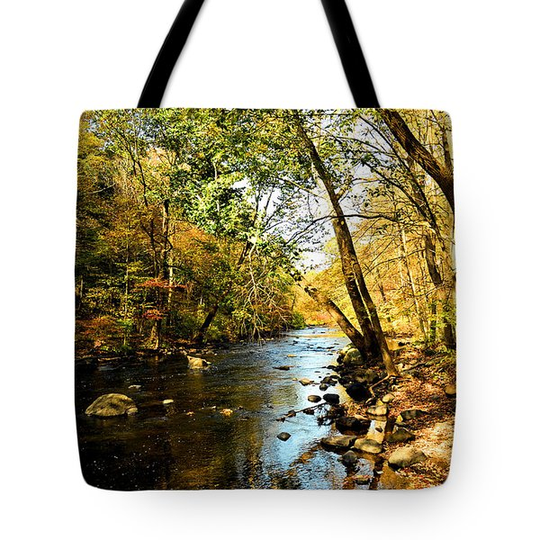 Musconetcong River Tote Bag by Brian Hughes