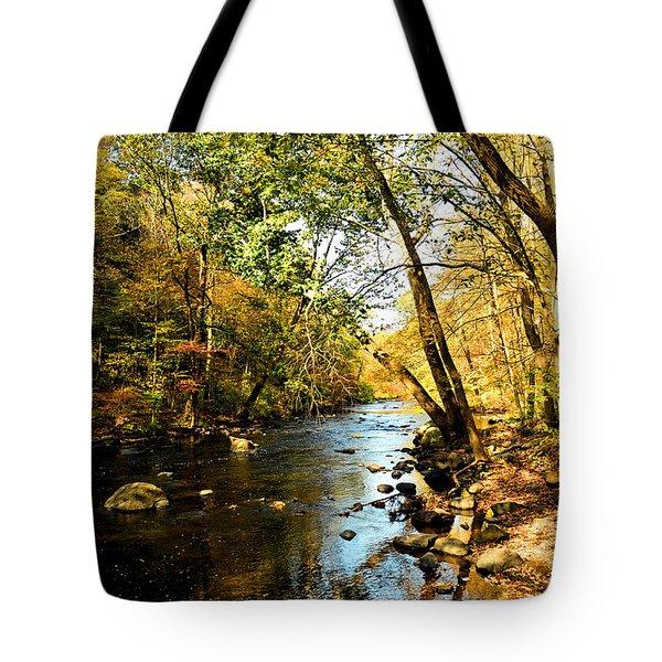 Musconetcong River Tote Bag