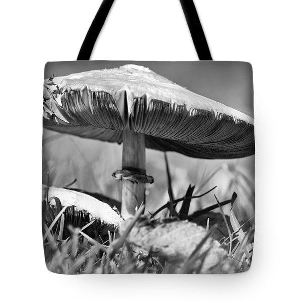 Mushroom In Black And White Tote Bag