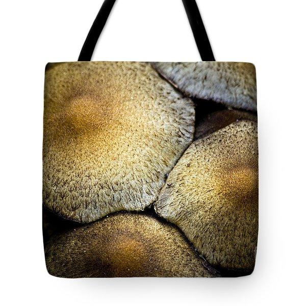 Mushrooms In Summer Tote Bag