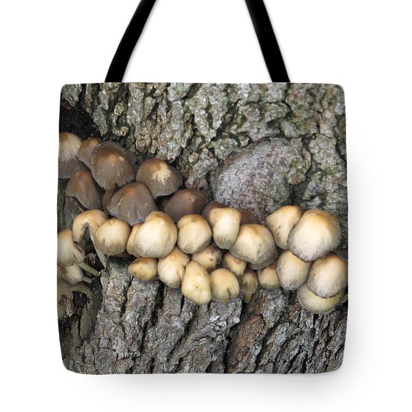 Tote Bag featuring the photograph Mushrooms by Tina M Wenger