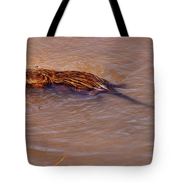 Muskrat Swiming Tote Bag