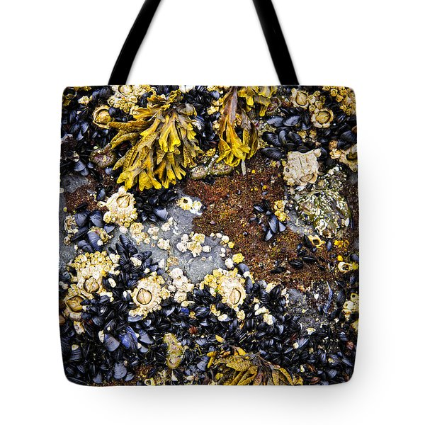 Mussels And Barnacles At Low Tide Tote Bag by Elena Elisseeva