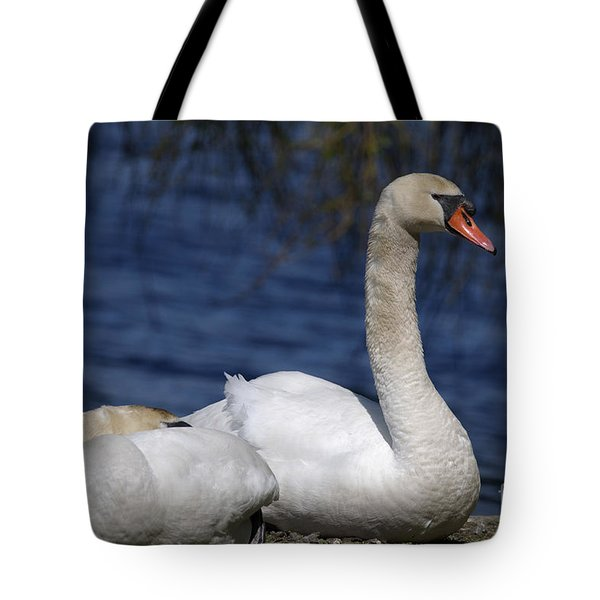 Mute Swans By Lagoon Tote Bag by Sharon Talson