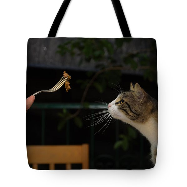 My Best Most Beloved Cat Tote Bag