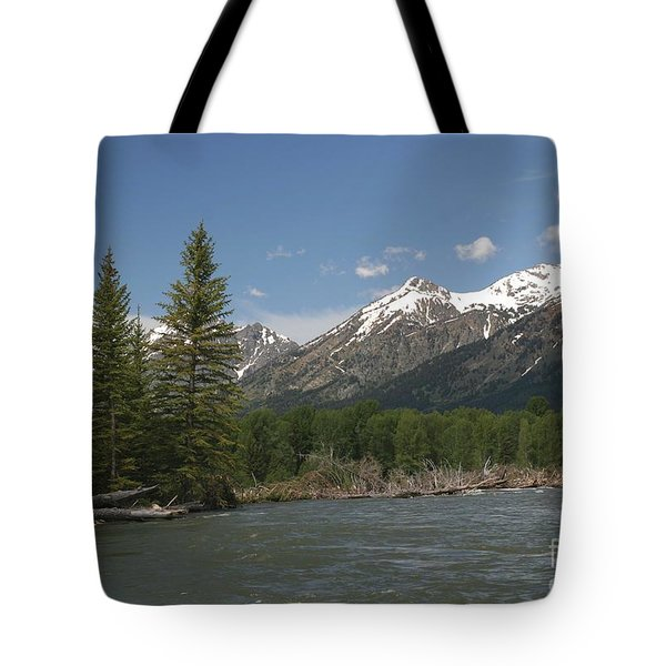 My Favorite Of The Grand Tetons Tote Bag by Living Color Photography Lorraine Lynch