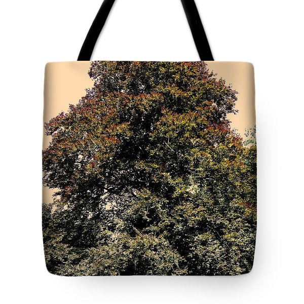 My Friend The Tree Tote Bag by Juergen Weiss