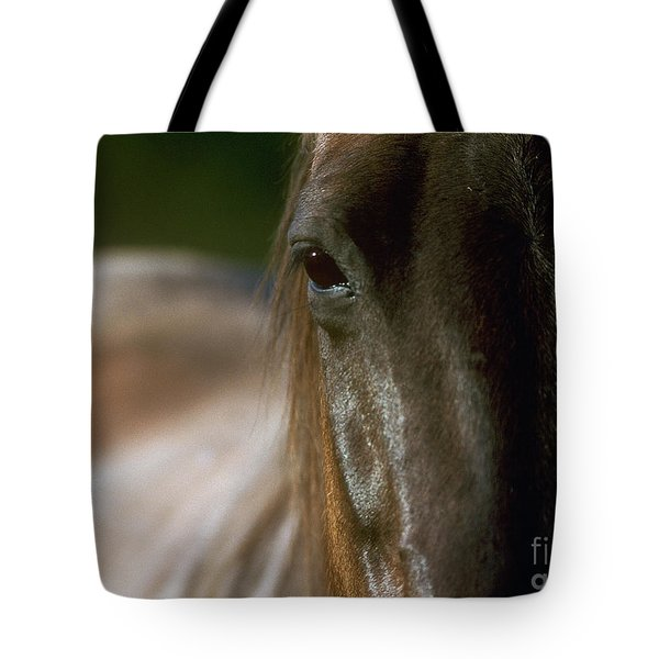 Tote Bag featuring the photograph My Neigh-bor's Horse by Doug Herr