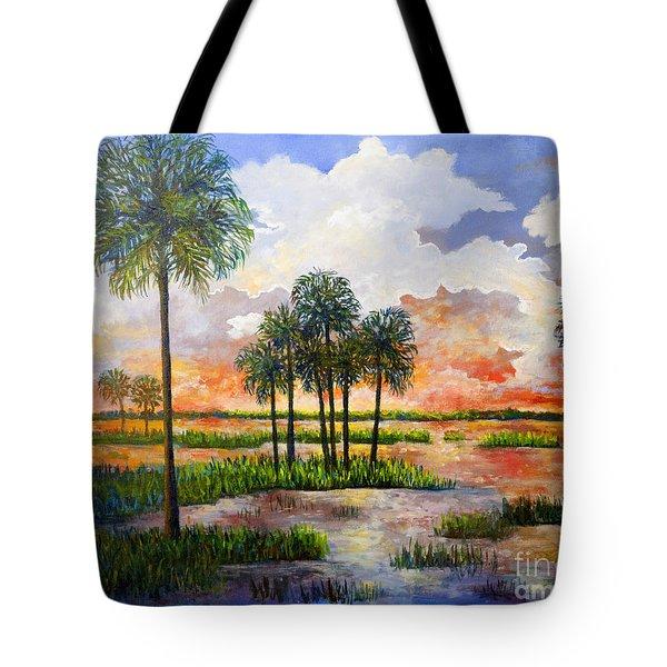 Myakka Sunset Tote Bag by Lou Ann Bagnall