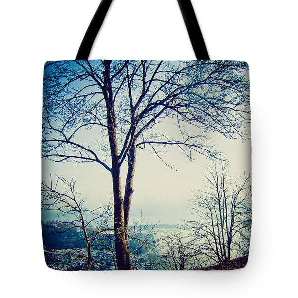 Tote Bag featuring the photograph Mystic Blue by Sara Frank