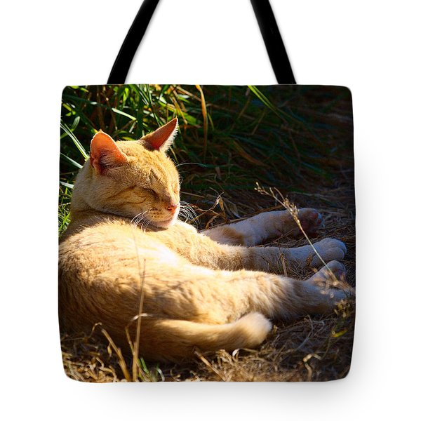 Napping Orange Cat Tote Bag