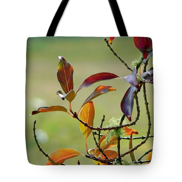Natural Autumn Tote Bag by Pamela Patch