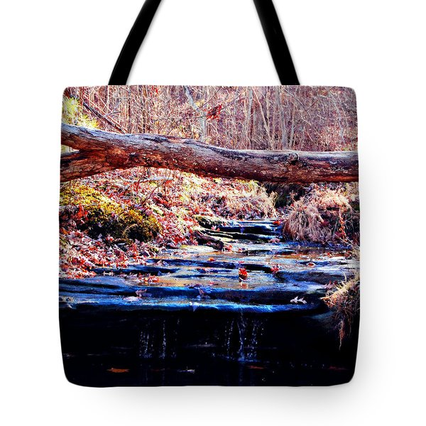 Tote Bag featuring the photograph Natural Spring Beauty  by Peggy Franz