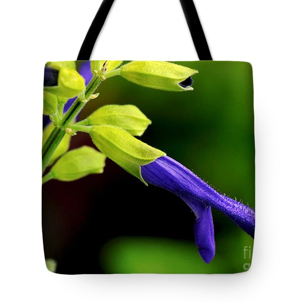 Nature Unfolding Tote Bag by Kaye Menner