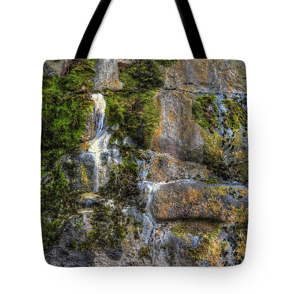 Nature's Abstract Tote Bag