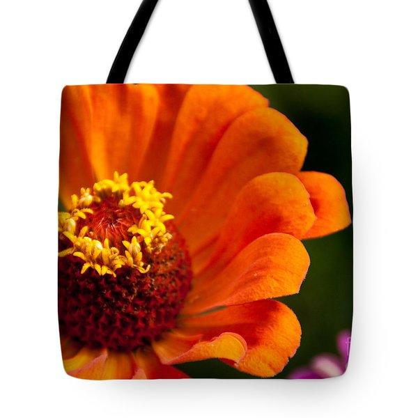 Natures Color  Tote Bag by Dana Kern
