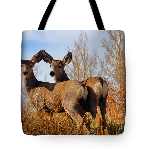 Tote Bag featuring the photograph Nature's Gentle Beauties by Lynn Bauer
