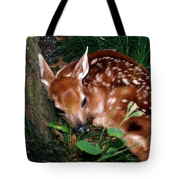 Nature's Precious Creation Tote Bag by Skip Willits