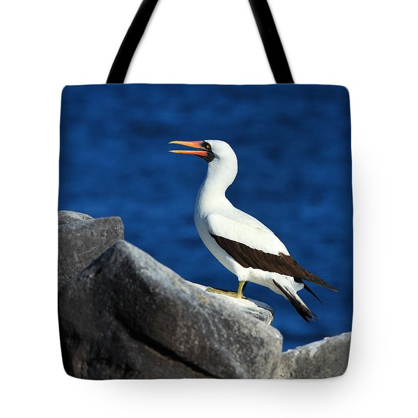Nazca Booby Tote Bag by Tony Beck