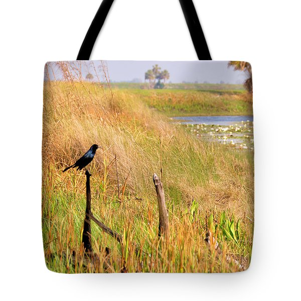 Near And Far Tote Bag by Jan Amiss Photography