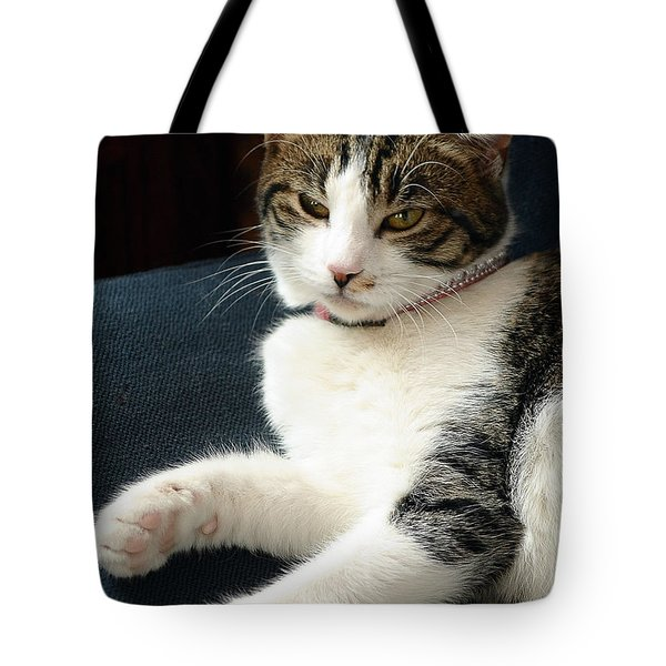 Nellie Tote Bag by Lisa Phillips