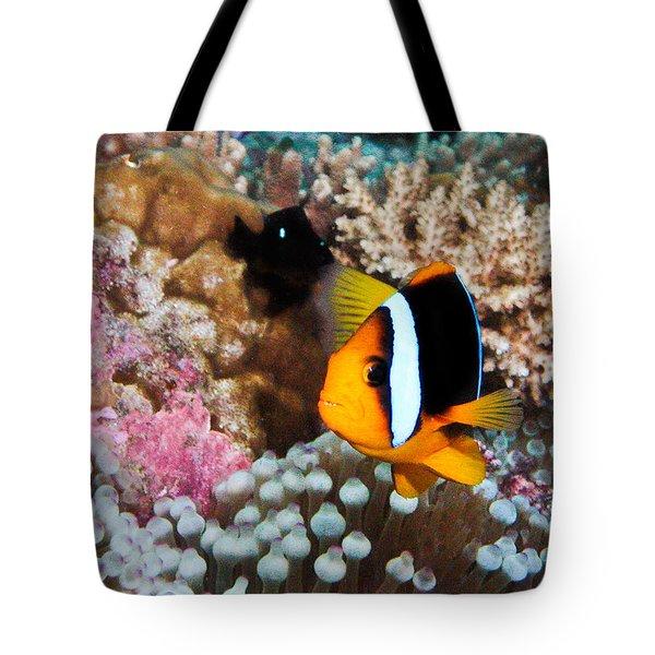 Nemo Tote Bag by Jean Noren
