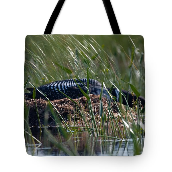 Tote Bag featuring the photograph Nesting Loon by Brent L Ander